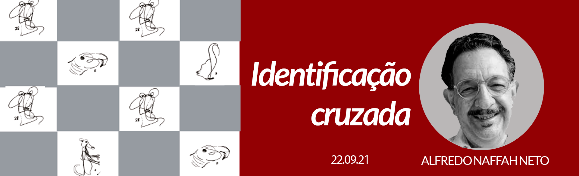 IDENTIFICAÇÃO CRUZADA